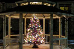 Gazebo Christmas tree 2014